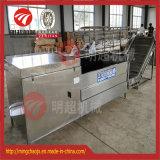 Batatas do aço inoxidável que raspam e máquina de casca