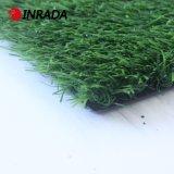 عشب طبيعيّ لأنّ حديقة مع وقت فراغ مرج