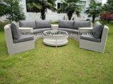 La alta calidad 8pcs sofá junco de lujo