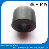 Anelli di ceramica/anisotropi del ferrito permanente del magnete