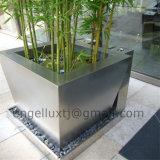 景色の木の鍋の植木鉢プランター鍋の庭のステンレス鋼の鍋