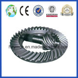 Gewundenes Bevel Gear Use in Hohem-End Truck N800 9/41
