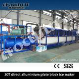 30t Por dia, placa de alumínio direto, bloco de congelamento, fabricante de gelo