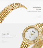 Логоса нержавеющей стали японии Movt вахт OEM Wristwatch повелительниц женщин диаманта Belbi батарея wristwatch Accell/377A женщин западного изготовленный на заказ