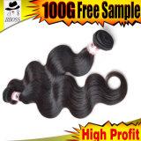 Prezzo di fabbrica malese del tessuto dei capelli umani per le donne