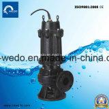 더러운 Wqd 시리즈/Sewgae 수도 펌프, 위생 펌프