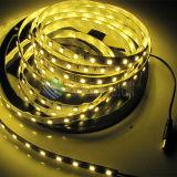 Alta calidad SMD5050 LED flexible de la tira 60LEDs / M con precio competitivo