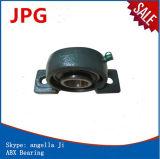 Ucp206-18/Ucp206 /Ucp206-19/Ucp 206-2 Kissen-Block-Lager