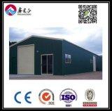 高品質によってカスタマイズされる鉄骨構造の倉庫(BYSS003)