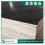 madera contrachapada marina impermeable de la base del álamo de 12mm/15mm/17mm/18m m