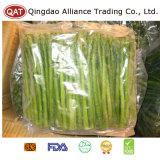 Замороженные зеленой спаржи в целом для экспорта