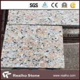 Azulejos de granito rojos baratos baratos del arce de piedra G562 para el suelo / pared / al aire libre