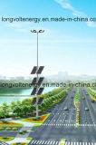 indicatore luminoso di inondazione solare 600watt con 15 tester Palo