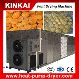 Machine de séchage de fruit industriel avec la pompe à chaleur technique