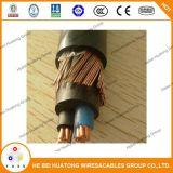 0.6/1кв 1*10AWG+10AWG колпачок клеммы втягивающего реле меди на мель короткого замыкания XLPE ПВХ Оболочки концентрической кабели