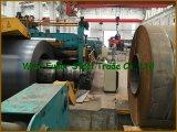 Placas de acero laminadas en caliente de carbón del precio bajo de la alta calidad de China