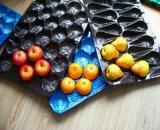 Comercio al por mayor de la bandeja de fruta de Plástico PP ecológica