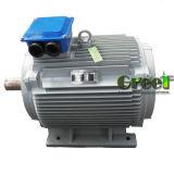 2kw AC de 3 phases à vitesse réduite/générateur à un aimant permanent synchrone de T/MN, vent/eau/pouvoir hydraulique