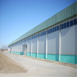Große Überspannungs-strukturelle Stahlwerkstatt mit Kran