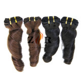 Fournisseur chinois de trame brésilien de cheveux humains de Vierge de cheveu