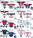 Настроенные Мужчины Женщины дети в американской Спрингфилд Соколов 2006-2015 Хоккей Джерси