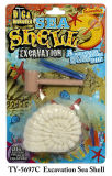 Drôle d'excavation Sea Shell Toy