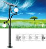 Éclairage de jardin de la batterie 10W-60W DEL de gel dans la lumière solaire de jardin