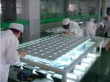 10 лет гарантии Monocrystalline Солнечная панель питания 250 Вт