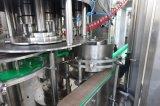 Água de soda Carbonated automática W da bebida do refresco do frasco de vidro de frasco do animal de estimação 3 na linha de produção da planta do engarrafamento para a coca-cola de Pepsi