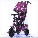 De in het groot Driewieler Met drie wielen Met drie wielen van de Jonge geitjes van de Baby van het Kind met de Staaf van de Duw