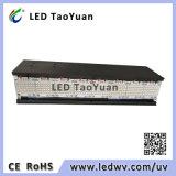 Impresora UV de 395nm 800W LED Lámpara de curado UV