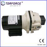 12V DC에 의하여 명백하게 하는 수도 펌프