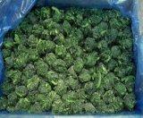 حارّ يبيع طازج بروز علاوة نوعية يجمّد يشطر إسفاناخ