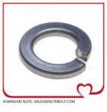 Ressort Washer/DIN127/Unc/Bsw/ASTM M18 d'acier inoxydable