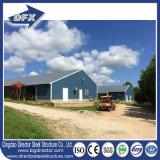 Casa de pollo vertida granja avícola del diseño del edificio de la estructura de acero del bajo costo que introduce para las capas