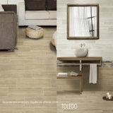 建築材料の陶磁器の床タイル600X600mm