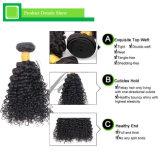 巻き毛最上質の100%加工されていない毛のブラジルのバージンの人間の毛髪