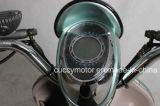 الصين نوعية [500ويث800ويث1000و] [60ف] درّاجة كهربائيّة ([كبيد] خنفساءة)