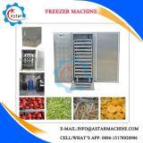 Zwei Tür verwendete Fleisch-Gemüsefrucht-Böe-Gefriermaschine für Verkauf