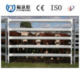 중국 사슴 가축 담 또는 목초지 필드 담
