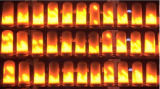 De LEIDENE Bol van de Vlam met de Sensor van de Ernst, de Stijgende Benedenwaartse Wijzen van de Vlam