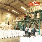 macchina di macinazione di farina del mais 50t/24h