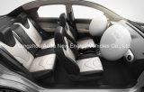 Automobile poco costosa pratica del veicolo elettrico con 4 sedi