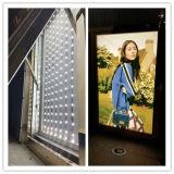 호텔 표시 시장 표시 Lightbox를 위한 방수 220lm 높 광도 3W 크리 사람 역광선 LED 모듈