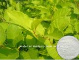 Resveratrol 1%~99% Uittreksel van Polygonum Cuspidatum trans Poeder Resveratrol