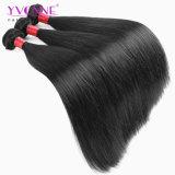 Do Virgin brasileiro da qualidade superior 8A do cabelo do vison cabelo humano