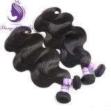 #1b Indian Remy de cabelo humano tecem (HW70)