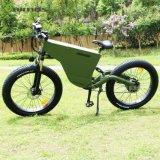 Le meilleur Tde-06 48V 1000W gros E vélo de vente d'Aimos