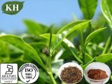 Extrato de Chá preto: Theaflavins 40%, 60%; polifenóis, 25%, 40%.