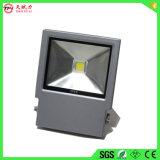 Heißes Flut-Licht des Verkaufs-30W LED im Freiendes projektor-Light/LED